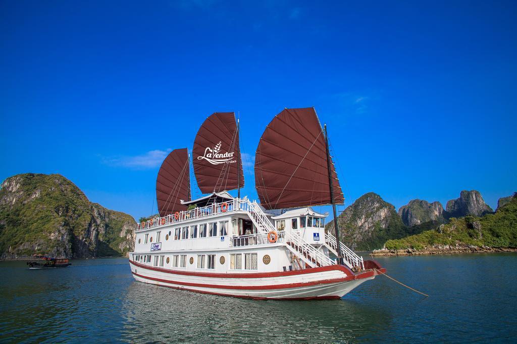 Lavender cruise ***