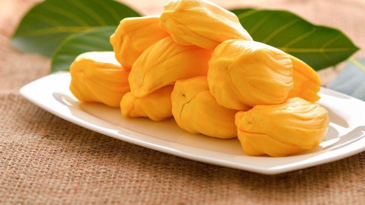 JACKFRUIT – A MUST TASTE DELICIOUS FRUIT IN VIETNAM
