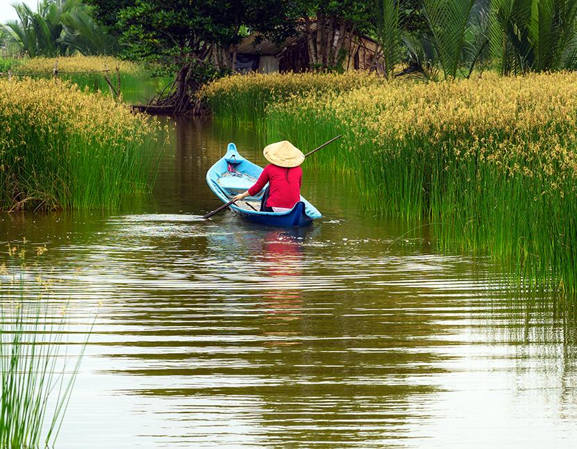 Mekong Delta in depth