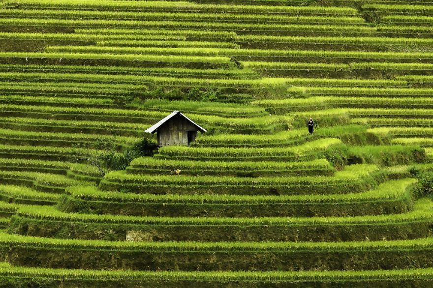 Mu Cang Chai - Worthwhile Destination for International Tourists